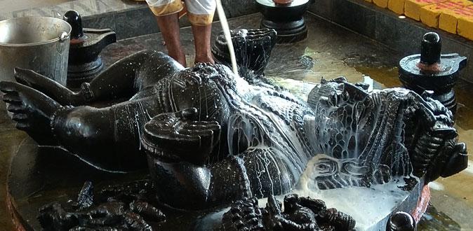 தன்வந்திரி பீடத்தில் நடைபெற்ற அமாவாசை யாகம் மற்றும் வாஸ்து சாந்தி ஹோமம்