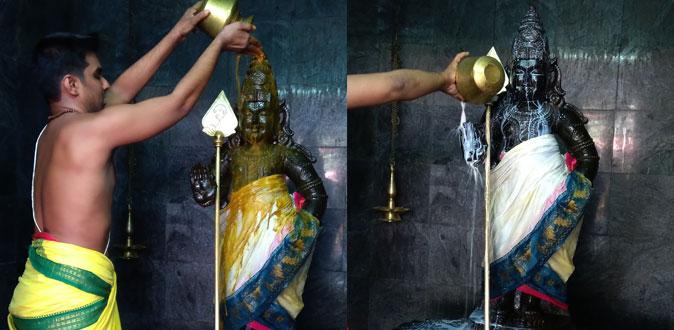சத்ரு சம்ஹார யாகத்துடன் பவித்ரோத்ஸவ விழா! - தன்வந்திரி பீடத்தில் தொடங்கியது